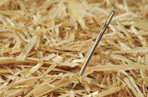 Needle in a Haystack: A Few of My Favorite Things