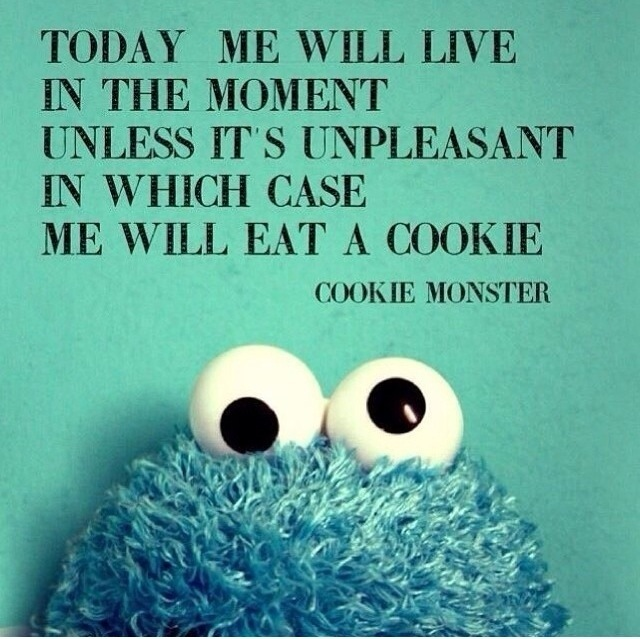 In Which I Quote Rumi And The Cookie Monster | Ann Sheybani